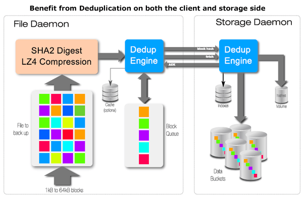 enterprise endpoint backup deduplication
