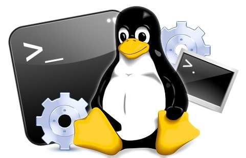 Linux server backup software