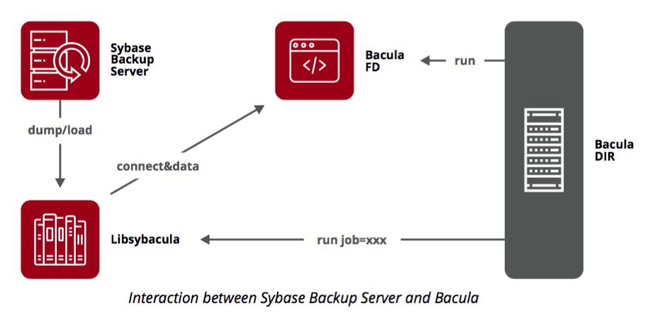 sybase backup